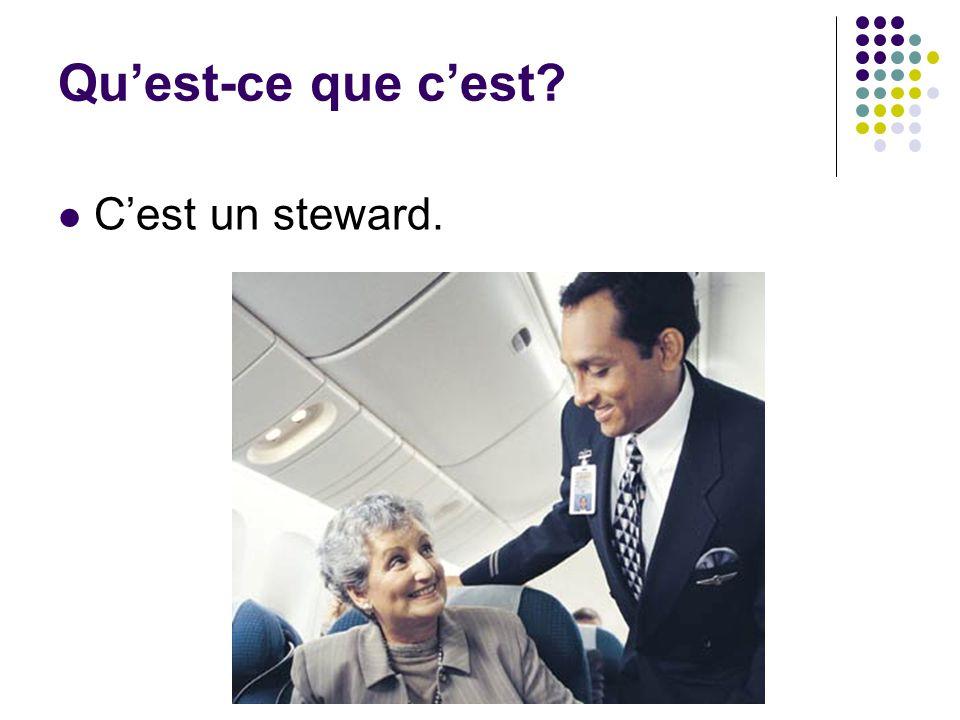 Qu'est-ce que c'est C'est un steward.