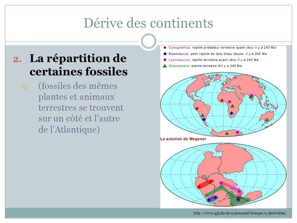 Dérive des continents La répartition de certaines fossiles