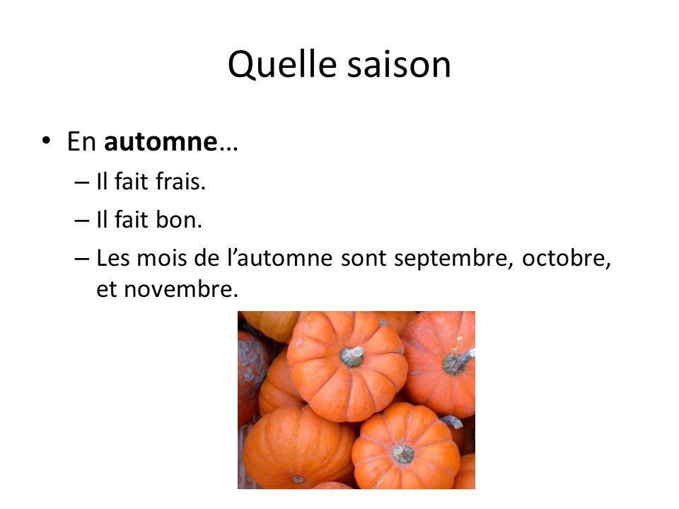Quelle saison En automne… Il fait frais. Il fait bon.