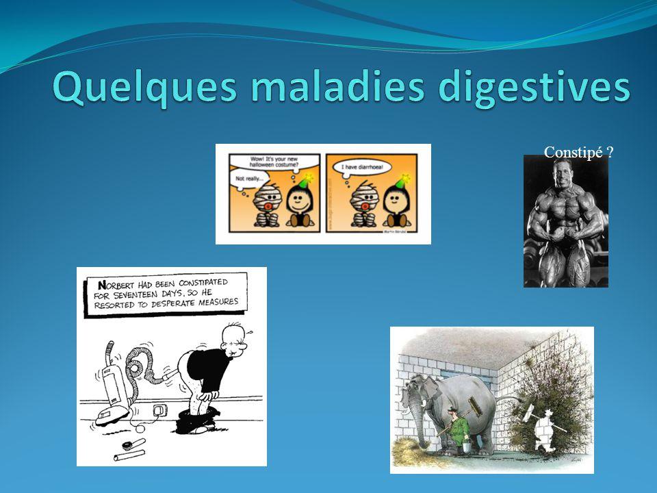 Quelques maladies digestives