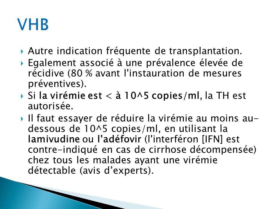 VHB Autre indication fréquente de transplantation.