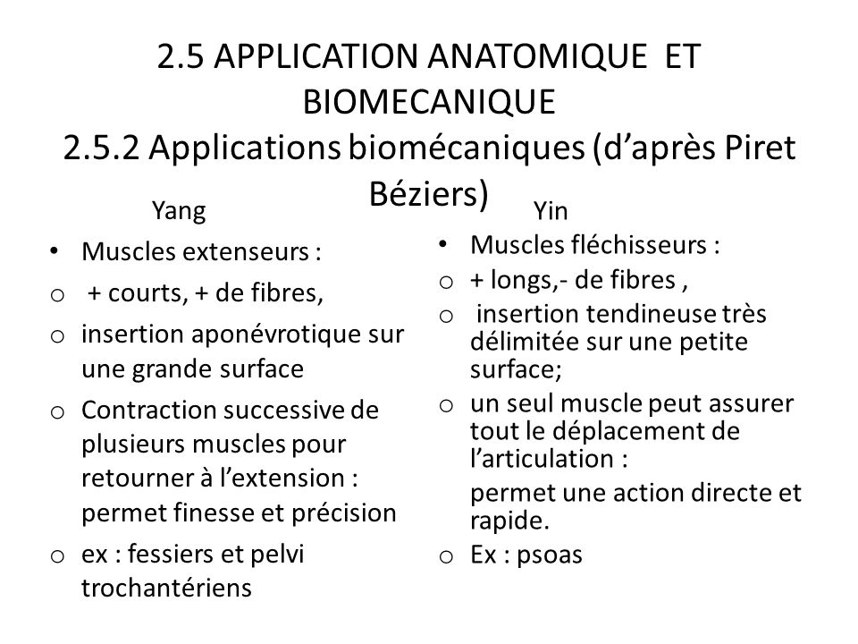 2. 5 APPLICATION ANATOMIQUE ET BIOMECANIQUE 2. 5