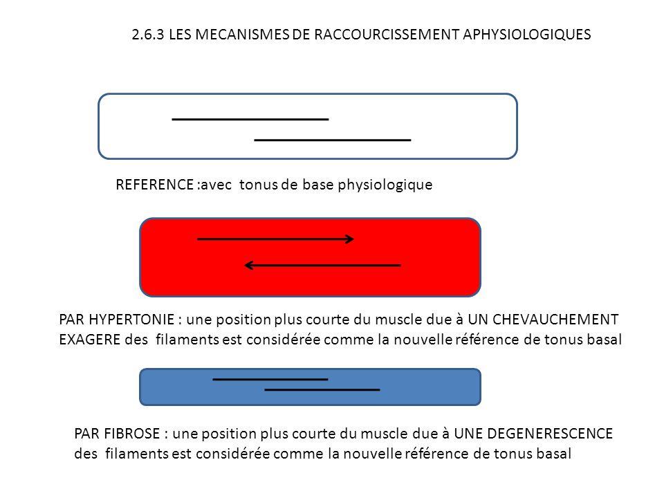 2.6.3 LES MECANISMES DE RACCOURCISSEMENT APHYSIOLOGIQUES