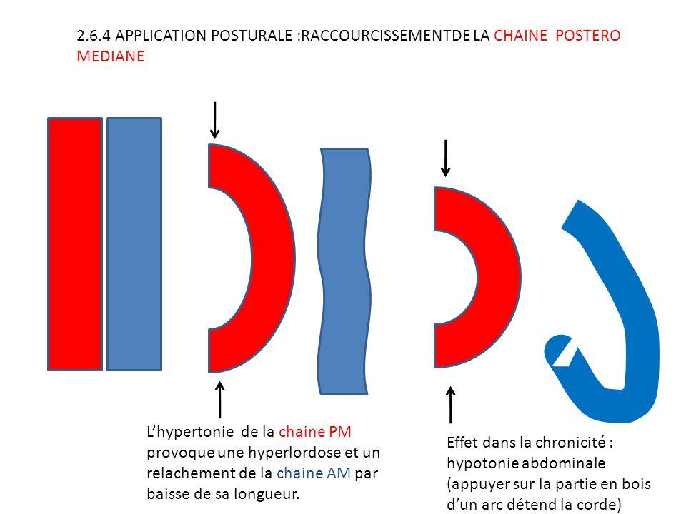 2.6.4 APPLICATION POSTURALE :RACCOURCISSEMENTDE LA CHAINE POSTERO MEDIANE