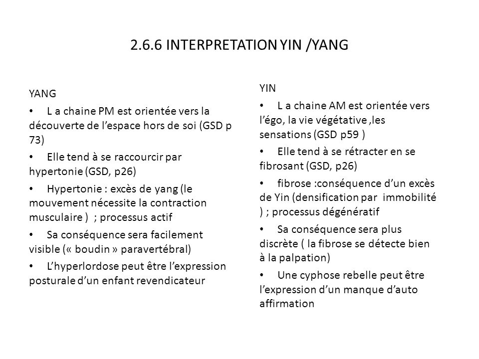 2.6.6 INTERPRETATION YIN /YANG