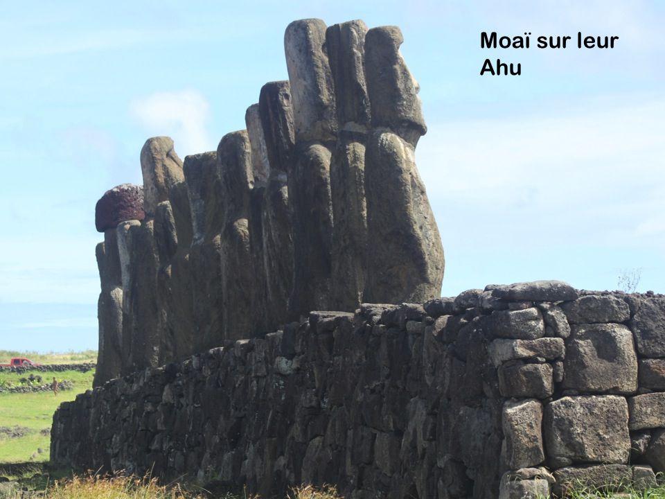 Moaï sur leur Ahu