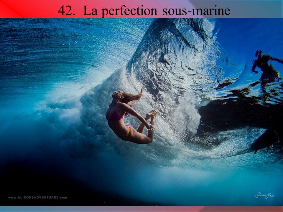 42. La perfection sous-marine
