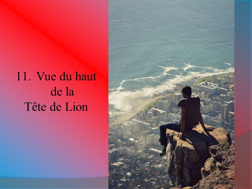 Vue du haut de la Tête de Lion