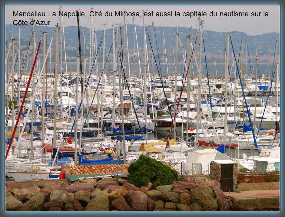 Mandelieu La Napoule, Cité du Mimosa, est aussi la capitale du nautisme sur la
