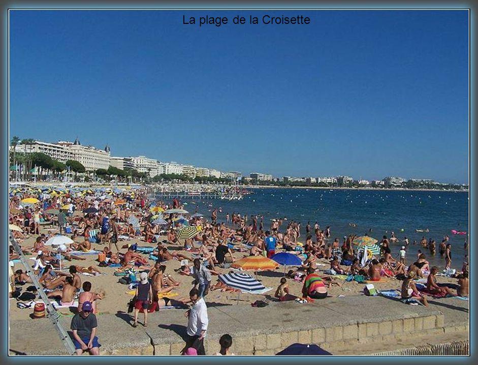 La plage de la Croisette