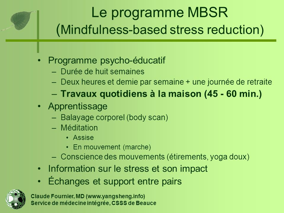 Le programme MBSR (Mindfulness-based stress reduction)
