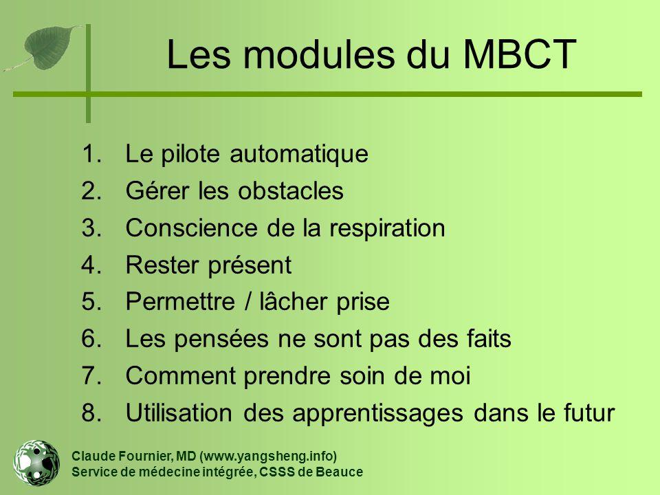 Les modules du MBCT Le pilote automatique Gérer les obstacles