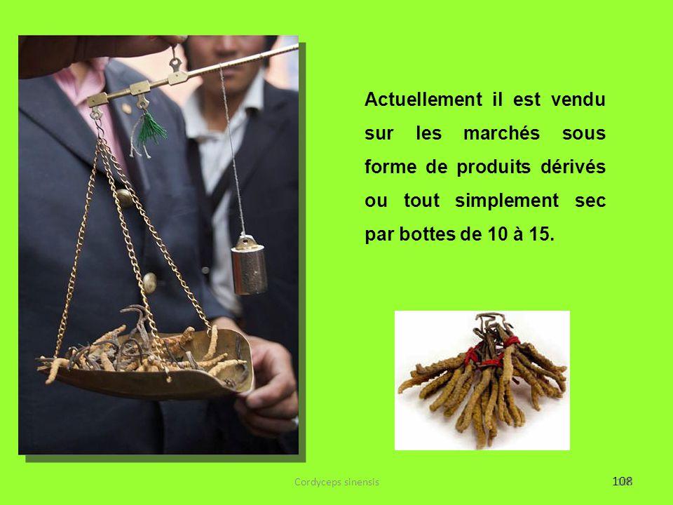 Actuellement il est vendu sur les marchés sous forme de produits dérivés ou tout simplement sec par bottes de 10 à 15.