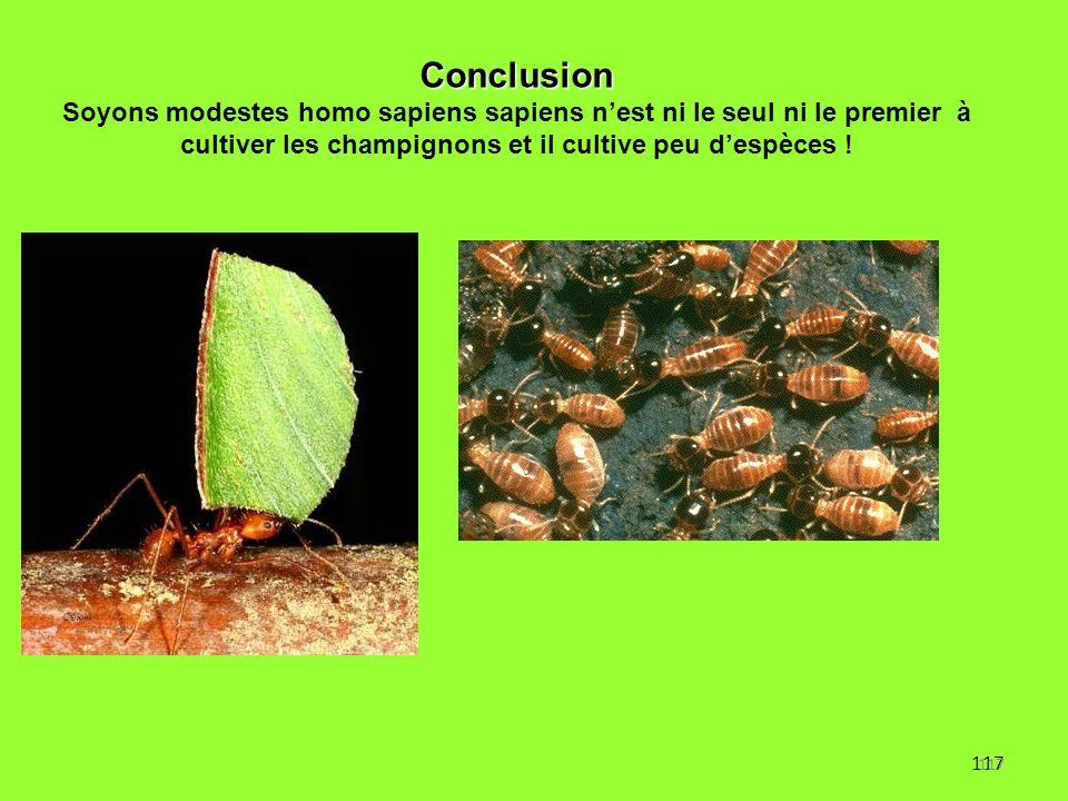 Conclusion Soyons modestes homo sapiens sapiens n'est ni le seul ni le premier à cultiver les champignons et il cultive peu d'espèces !