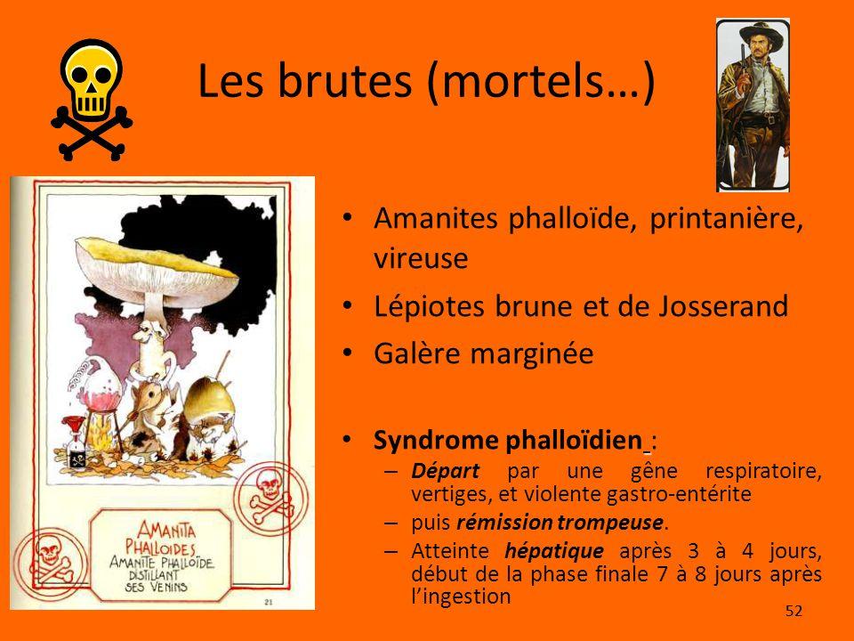 Les brutes (mortels…) Amanites phalloïde, printanière, vireuse