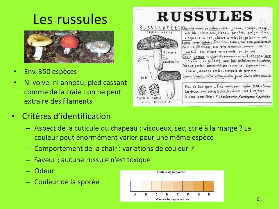 Les russules Critères d'identification Env. 350 espèces