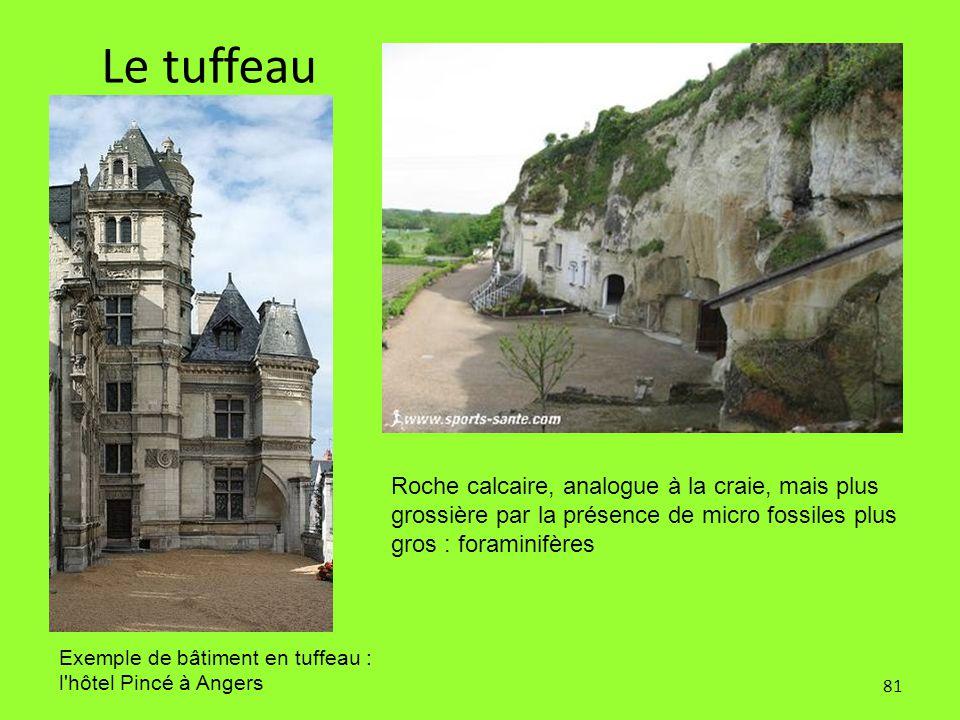 Le tuffeau Roche calcaire, analogue à la craie, mais plus grossière par la présence de micro fossiles plus gros : foraminifères.