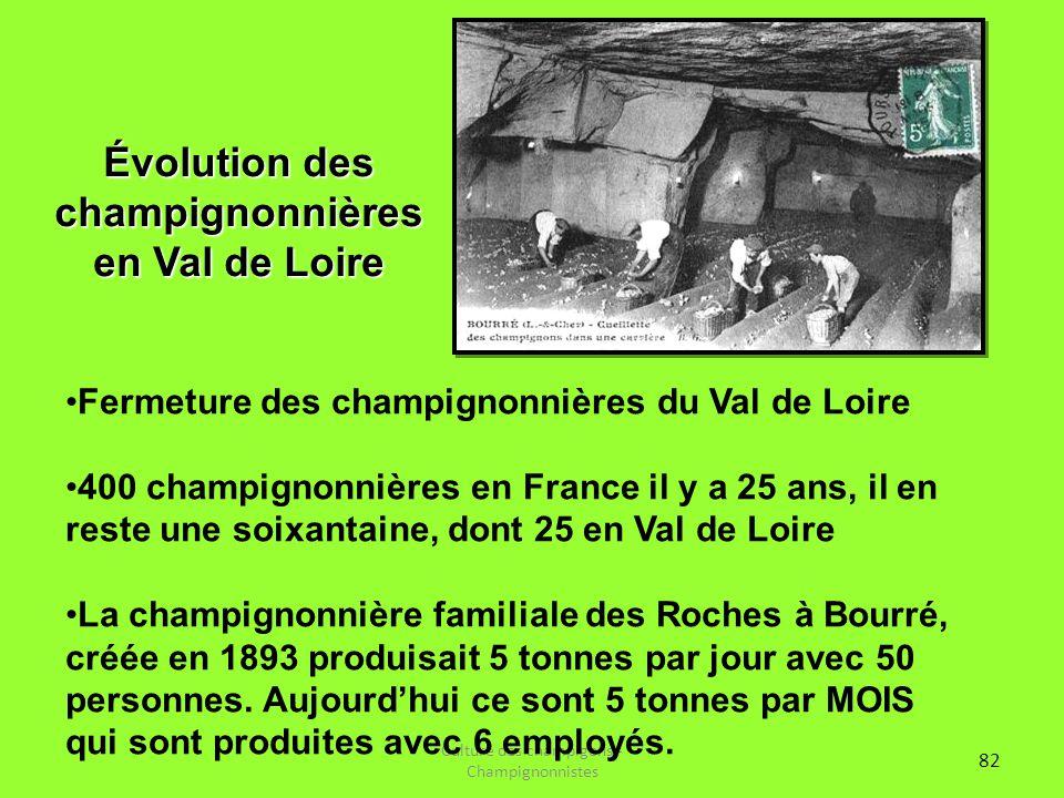 Évolution des champignonnières en Val de Loire