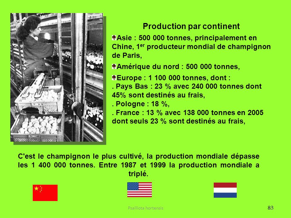 Production par continent