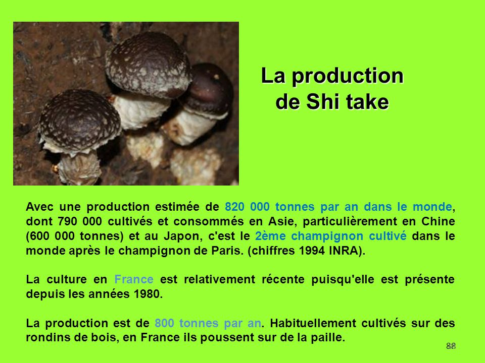 La production de Shi take