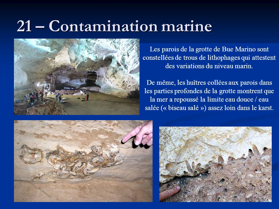 21 – Contamination marine