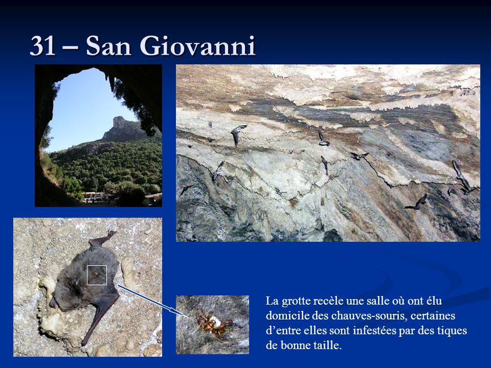31 – San Giovanni