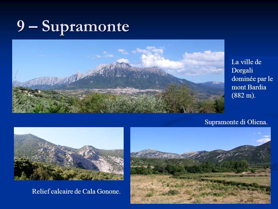 9 – Supramonte La ville de Dorgali dominée par le mont Bardia (882 m).