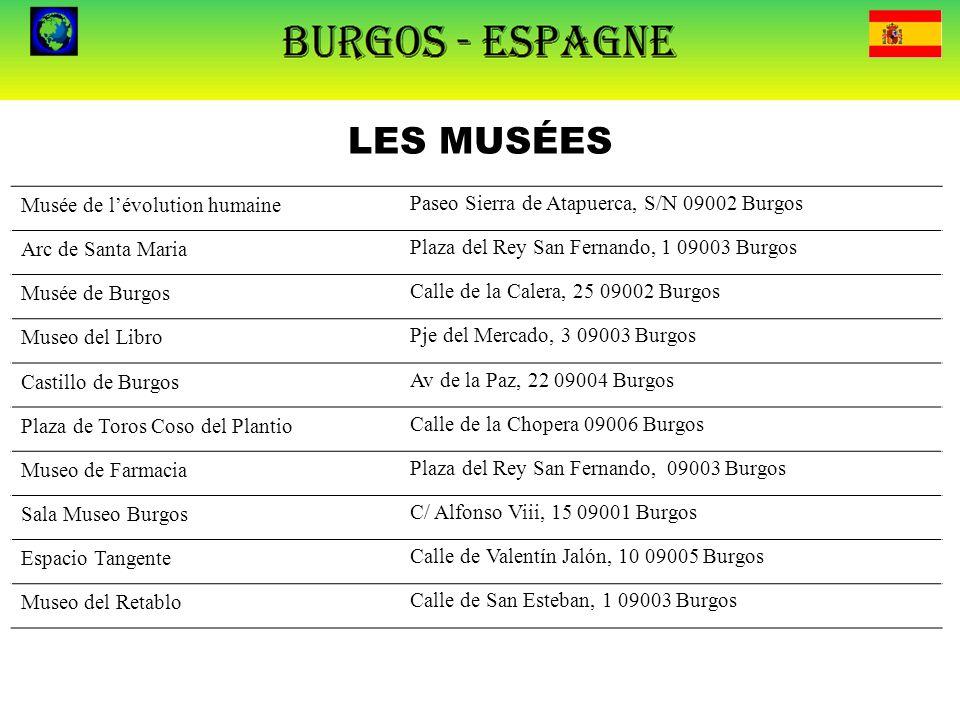 LES MUSÉES Musée de l'évolution humaine