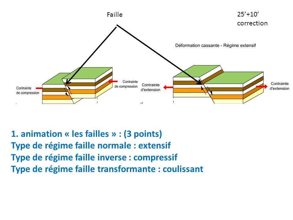 1. animation « les failles » : (3 points)