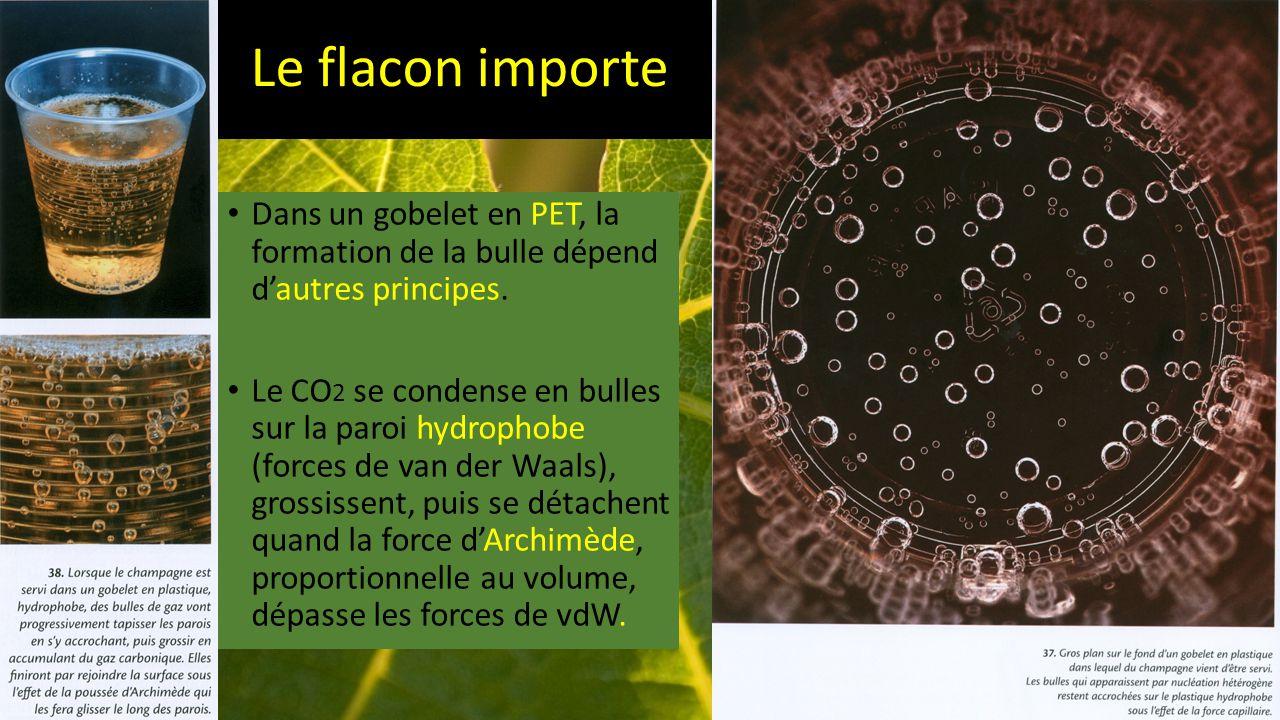 Le flacon importe Dans un gobelet en PET, la formation de la bulle dépend d'autres principes.