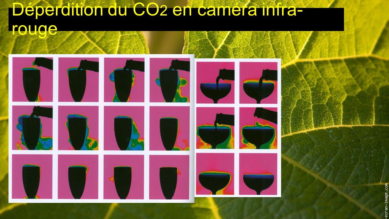 Déperdition du CO2 en caméra infra-rouge