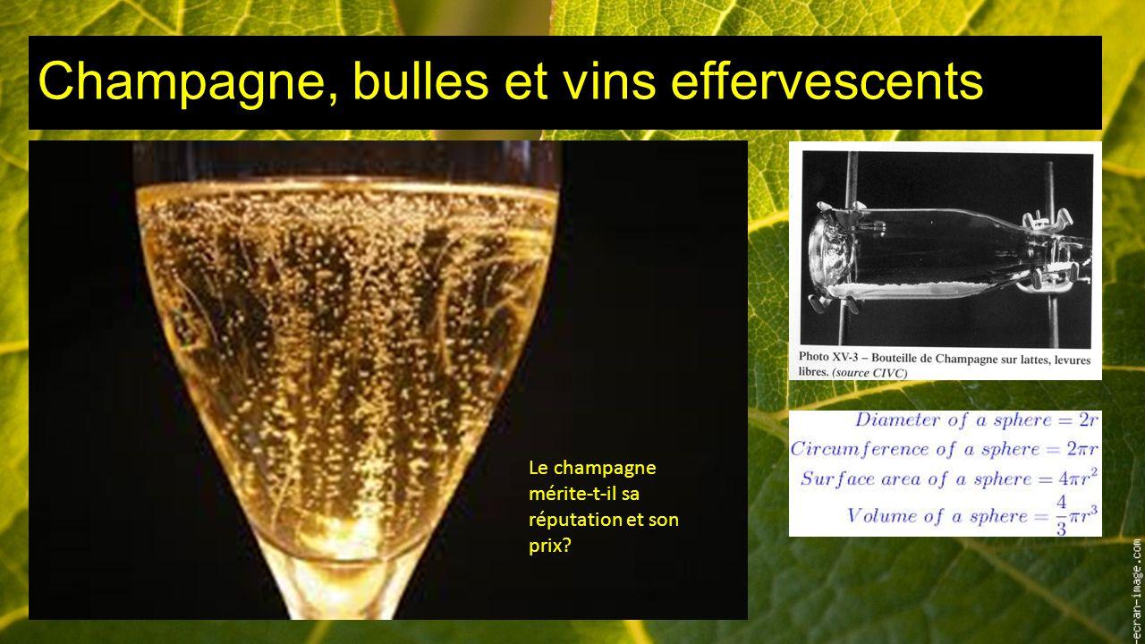 Champagne, bulles et vins effervescents