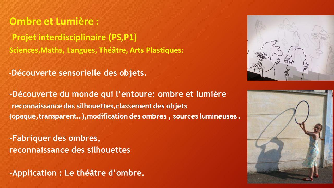 Projet interdisciplinaire (PS,P1)