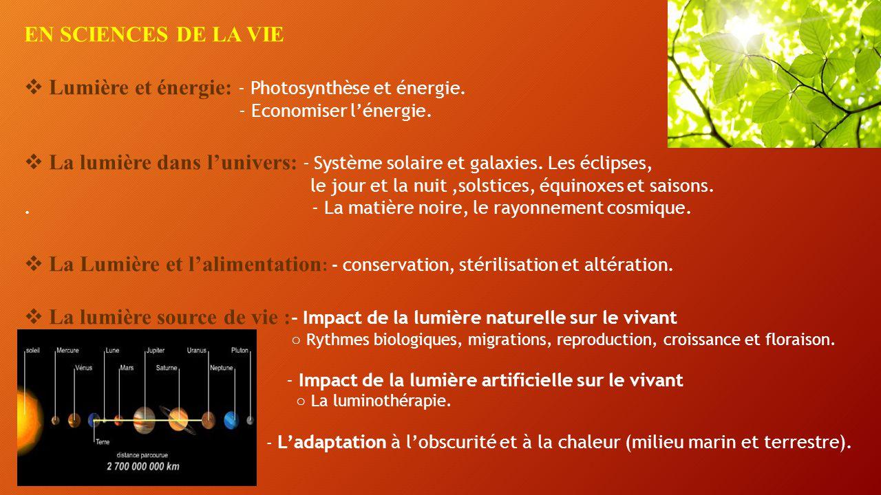 Lumière et énergie: - Photosynthèse et énergie.