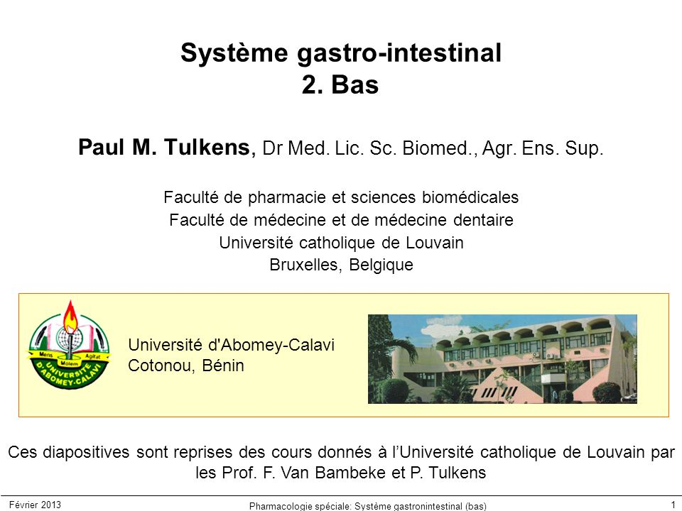 Système gastro-intestinal 2. Bas