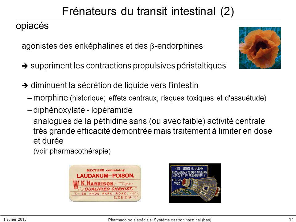Frénateurs du transit intestinal (2)