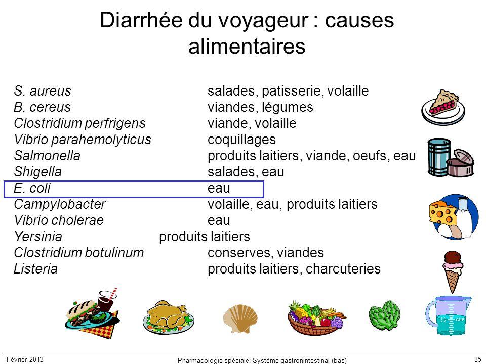 Diarrhée du voyageur : causes alimentaires