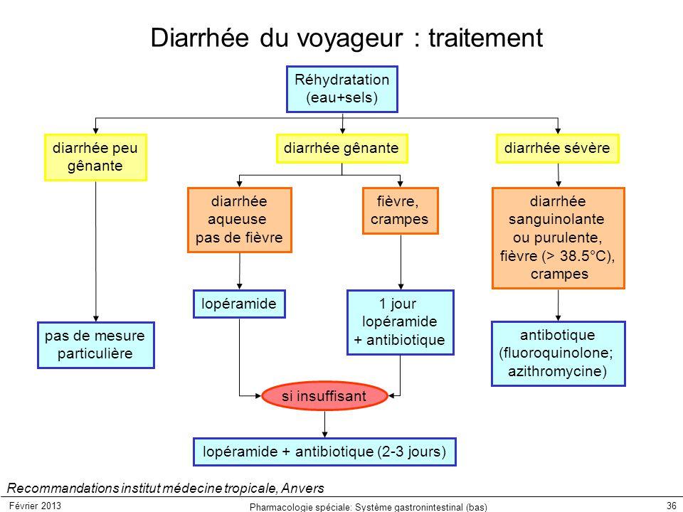 Diarrhée du voyageur : traitement