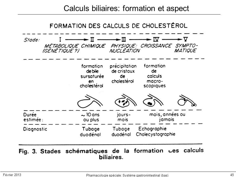Calculs biliaires: formation et aspect