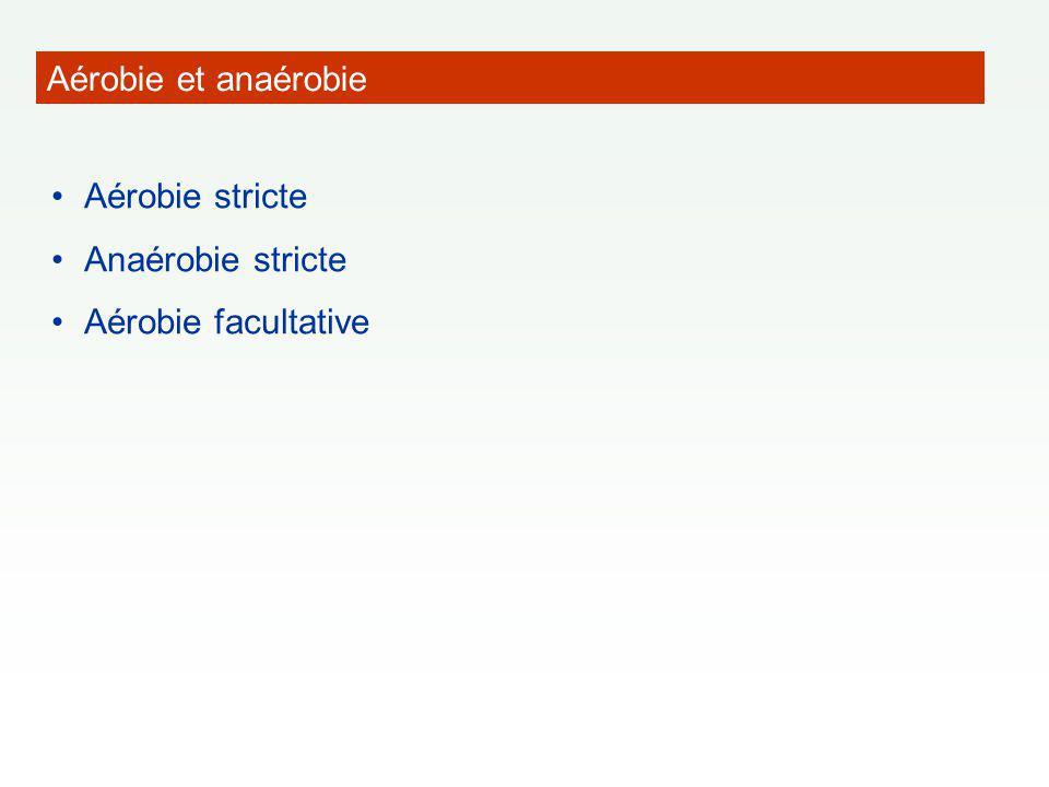 Aérobie et anaérobie Aérobie stricte Anaérobie stricte Aérobie facultative