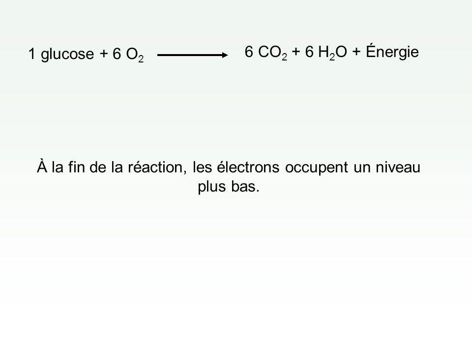 À la fin de la réaction, les électrons occupent un niveau plus bas.