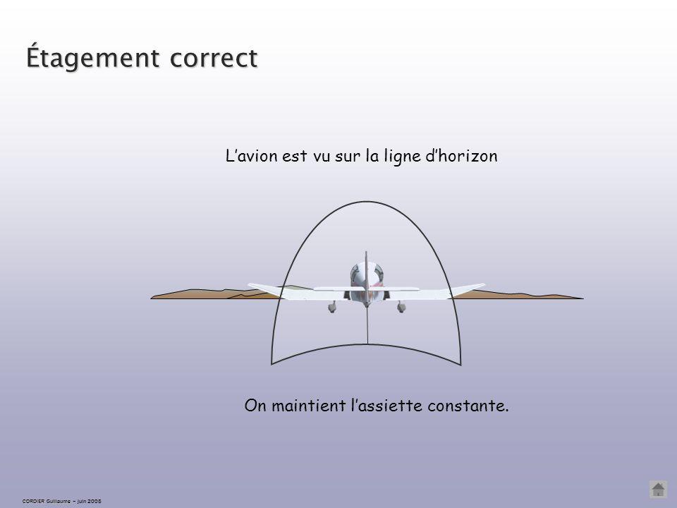 Étagement correct L'avion est vu sur la ligne d'horizon