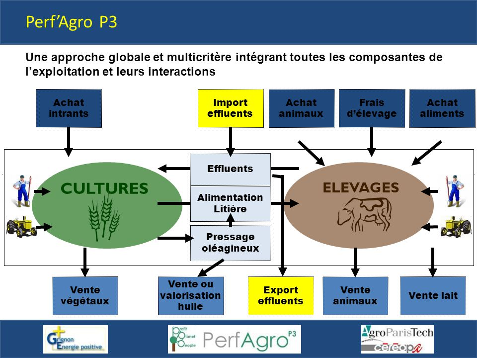Perf'Agro P3 CULTURES ELEVAGES