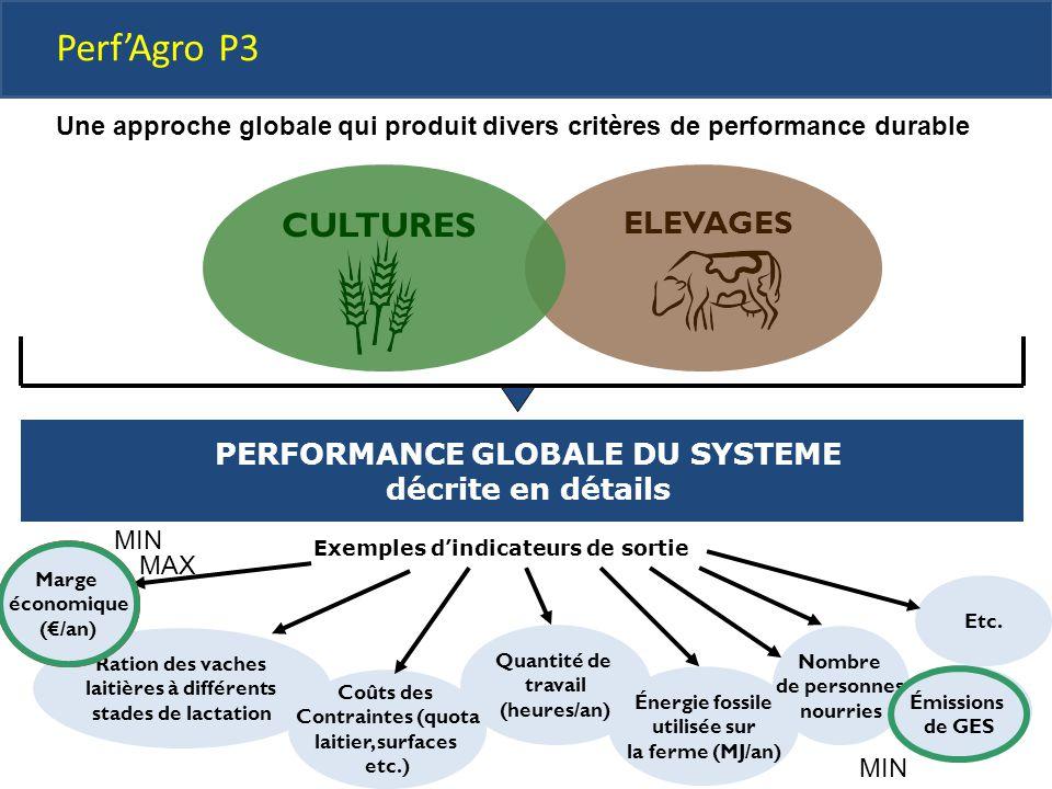 PERFORMANCE GLOBALE DU SYSTEME décrite en détails