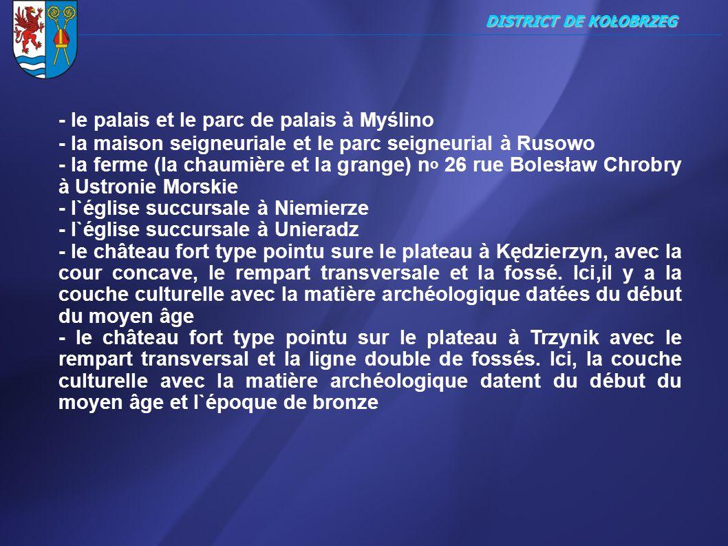 - le palais et le parc de palais à Myślino
