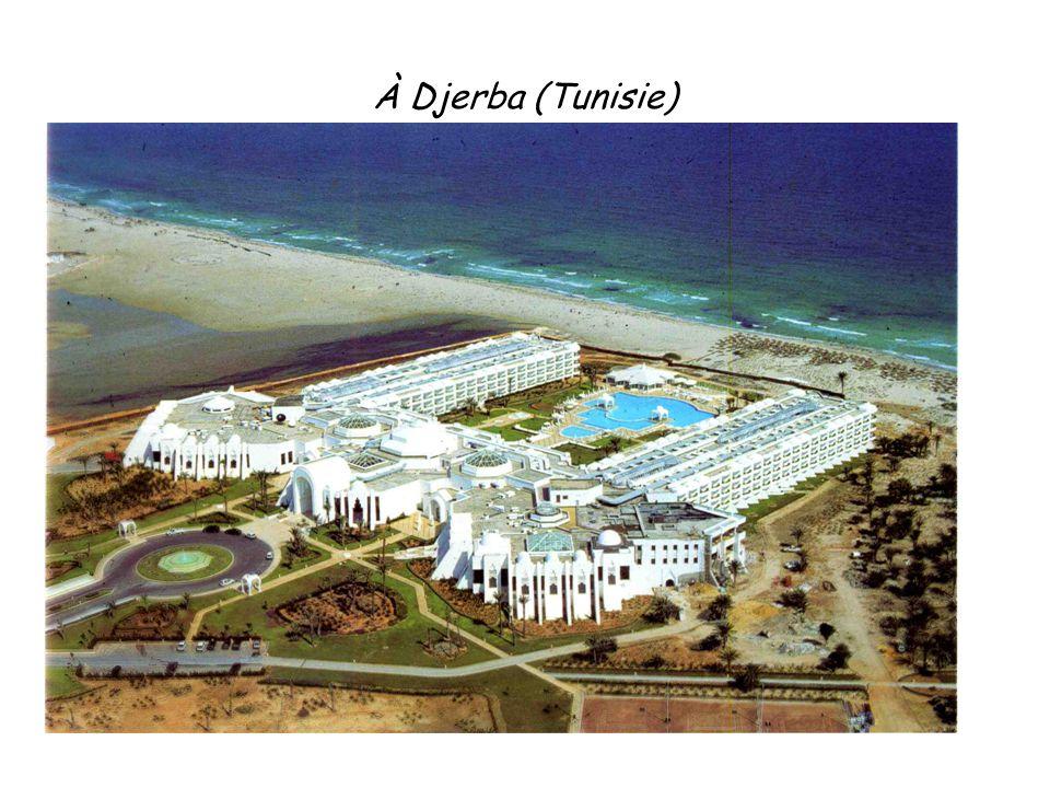 À Djerba (Tunisie) 13