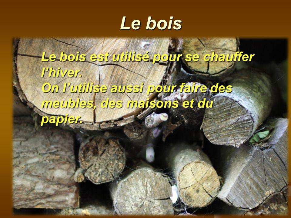 Le bois Le bois est utilisé pour se chauffer l'hiver.