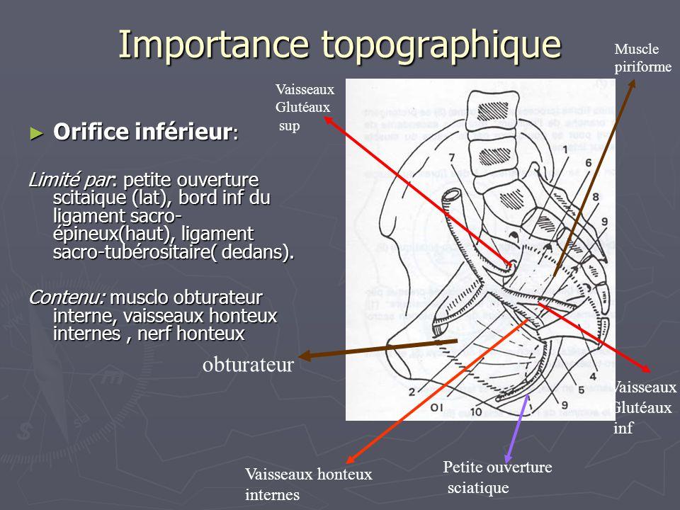 Importance topographique