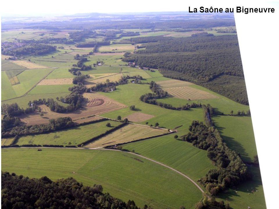 Vallée de la Saône près des Thons