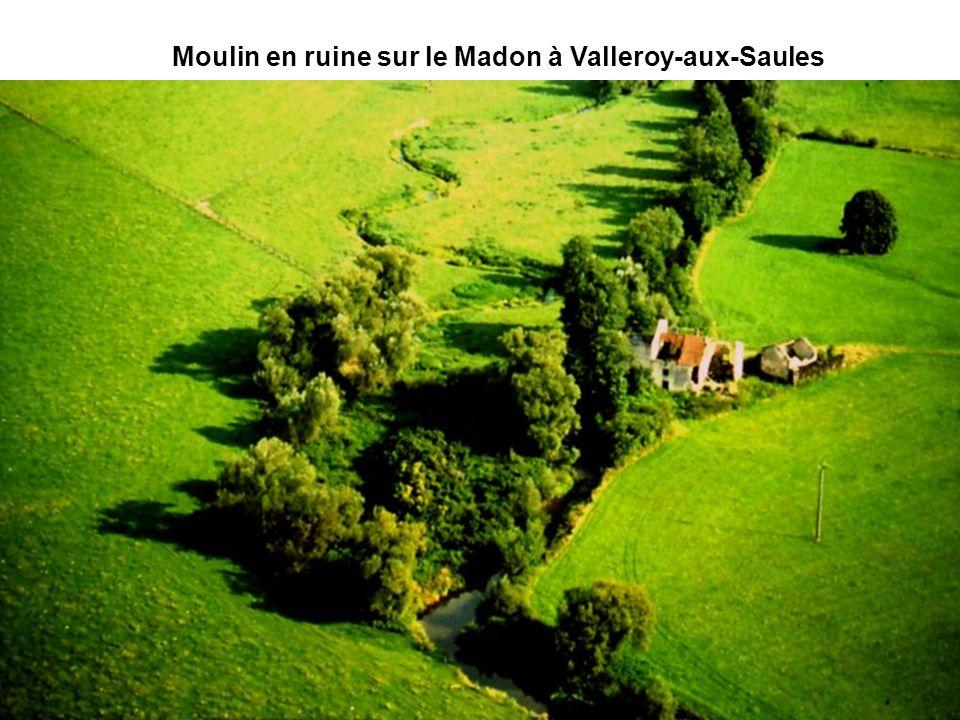 Moulin en ruine sur le Madon à Valleroy-aux-Saules